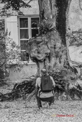 Gaël Moignot, adhérent de l'AMAC devant le vénérable tilleul (Label Arbre remarquable de France en 2018), Domaine de Malagar. Centre François Mauriac, Saint-Maixant. 28/09/2019 Reproduction interdite - Tous droits réservés © Christian Coulais