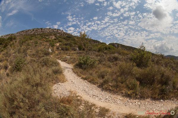 3/3  Vue de la vallée et du plateau en aval de la Foz de Lumbier, Navarra