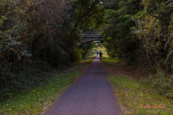 D'Espiet à l'ancien tunnel ferroviaire de la Sauve, 3km. Ouvre la voix, samedi 4 septembre 2021. Photographie © Christian Coulais