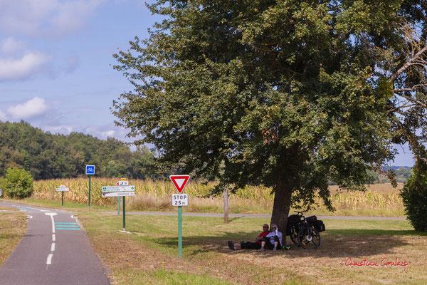 """""""Piste cyclable Roger Lapébie, repos ombragé"""" De Frontenac à Espiet; 11km. Ouvre la voix, samedi 4 septembre 2021. Photographie © Christian Coulais"""