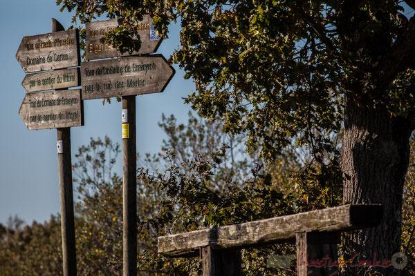 Sentier de randonnée du Domaine de Graveyron, Audenge, espace naturel sensible de Gironde