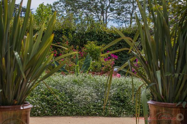 Le jardin des bougainvilliers; le Conservatoire des collections végétales spécialisées, C.C.V.S; France. Mercredi 26 août 2015. Photographie © Christian Coulais