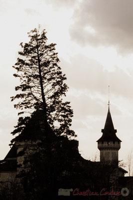 Château de Carignan, détail ds toitures. Carignan-de-Bordeaux