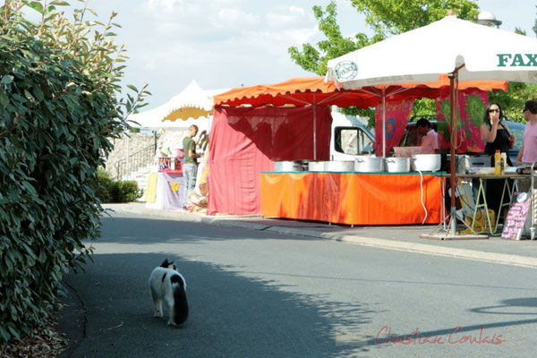 Restauration sur place et boutiques artisanales. Festival JAZZ360, Les coulisses du Festival à Cénac. 03/06/2011