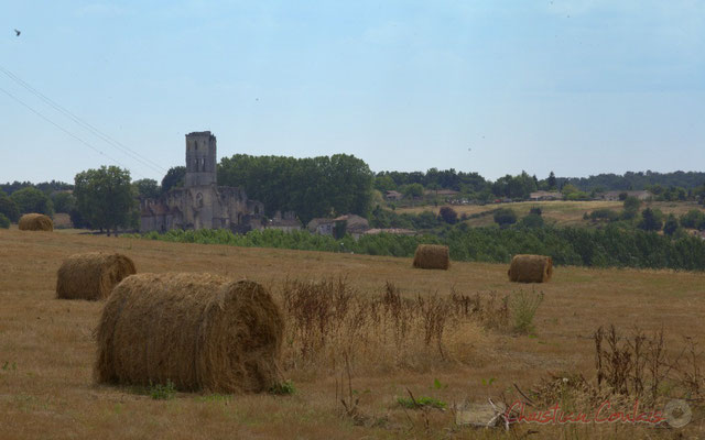 Balade autour de l'Abbaye de la Sauve-Majeure