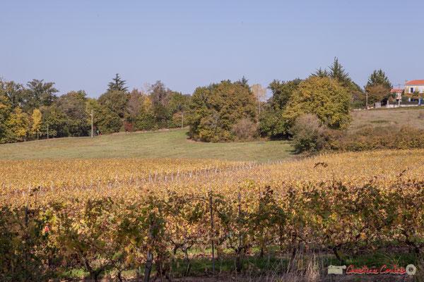 12 Un 360°, Chemin de Mons, Cénac, Gironde. 16/11/2017