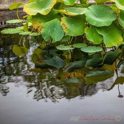 Le jardin coréen, Prés du Goualoup;  jardiniers du Domaine de Chaumont-sur-Loire