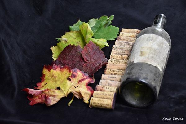 Nature morte aux multiples matériaux, Atelier Photo Numérique de l'AMAC. 09/11/2019 Photographie © Karine Jourdan-Durand