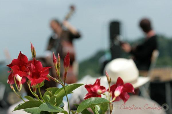 Château Lestange; Philippe Bayle Trio. Festival JAZZ360 2011, Quinsac. 05/06/2011