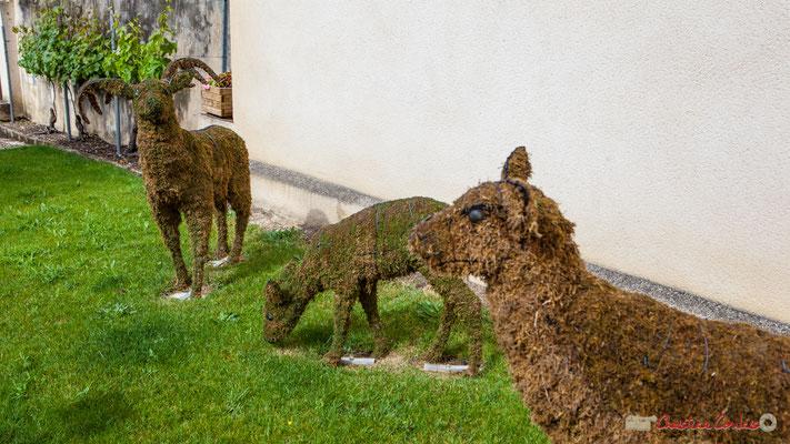 Art topiaire. Blasimon, ville-bastide de la Gironde