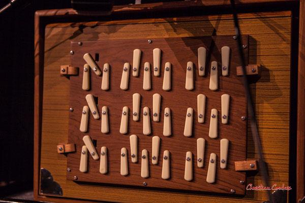 """Shruti box M4 à 3 octaves de Sylvain Rifflet ; Sylvains Rifflet """"Troubadours"""" Quartet. Festival JAZZ360, samedi 5 juin 2021, Cénac. Photographie © Christian Coulais"""