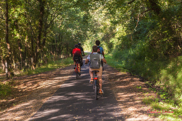 De la sation vélo de Créon à l'ancienne gare de Sadirac; 5,5km. Ouvre la voix, dimanche 5 septembre 2021. Photographie © Christian Coulais