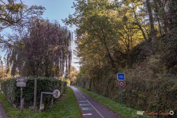 Le chemin de Brice surplombe l'ancienne voie ferré, piste cyclable Roger Lapébie / Voix verte. Cénac, Gironde. 16/10/2017