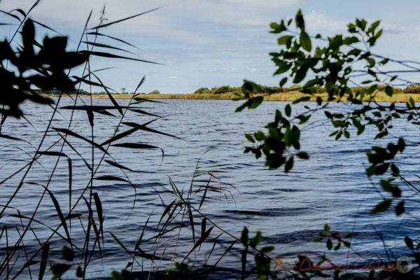 L'alios est ici aussi présent. L'air en provenance de l'étang possède un parfum spécifique comme à Sanguinet par exemple...Étang de Cousseau