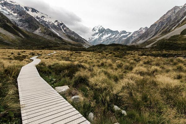 am Mount Cook