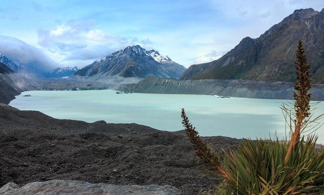 Tasman Sea / Mount Cook