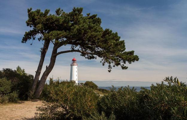 Lighthouse Hiddensee