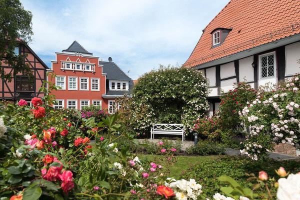 Rosengarten Heilbad Heiligenstadt