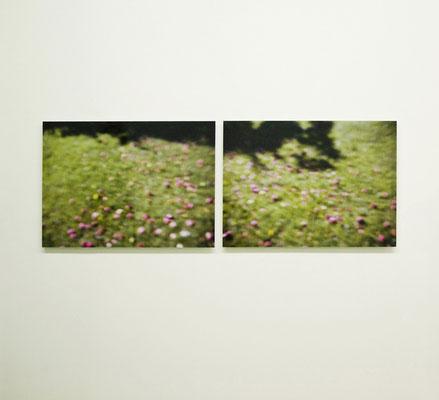 """AEPFEL"" Diptychon, 2011, Ausstellungsansicht, Axel Obiger, Berlin, 2012"