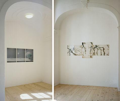 """""""Blumen"""", Triptychon, 2006 und """"Boule"""", Triptychon, 2007, Ausstellungsansicht, Museum der Stadt Füssen, 2011"""