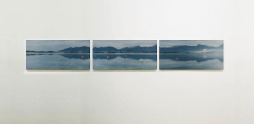 """""""Forggensee"""", Triptychon 2007, Ausstellungsansicht, Museum der Stadt Füssen, 2011"""