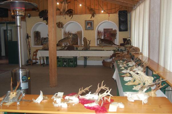 Bild: Die Jagdschule St. Hubertus verfügt über hunderte von eigenen Präparate.