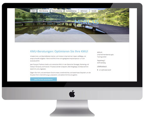 Webdesign, dickesdesign, aarberg, merlas, KMU-Beratung