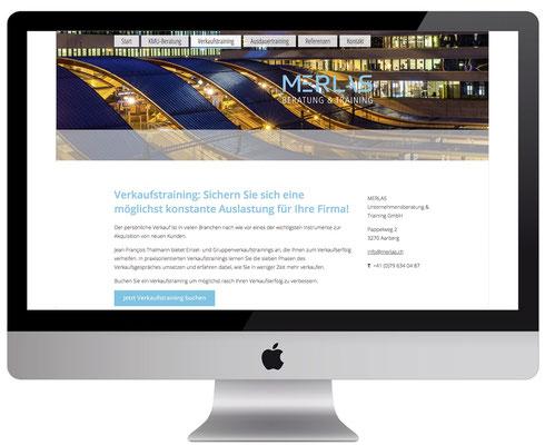 Webdesign, dickesdesign, aarberg, merlas, Verkaufstraining
