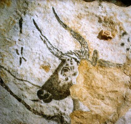 Les Grottes de Lascaux II (Montignac) - Plus d'informations : http://www.lascaux-dordogne.com/fr/la-grotte-de-lascaux