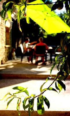 Le Clos Cosy - La terrasse ensoleillée