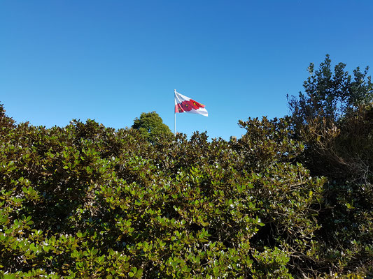 The Poppy Flag flying in New Zealand