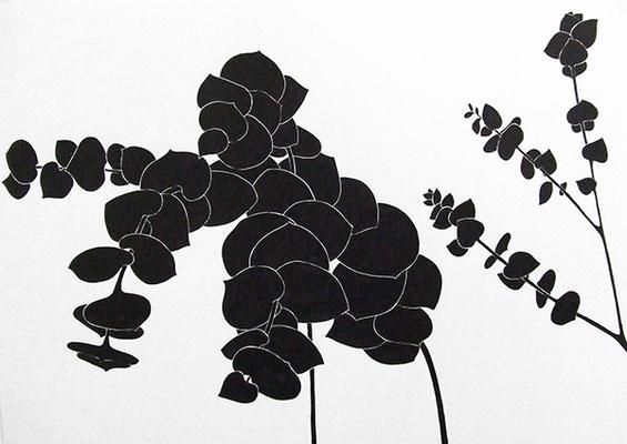 EUKA 1, 2009, Tusche auf Papier, 56 x 72 cm