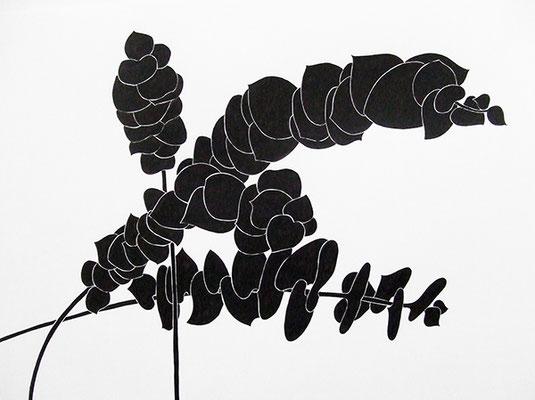 EUKA 3, 2009, Tusche auf Papier, 56 x 72 cm