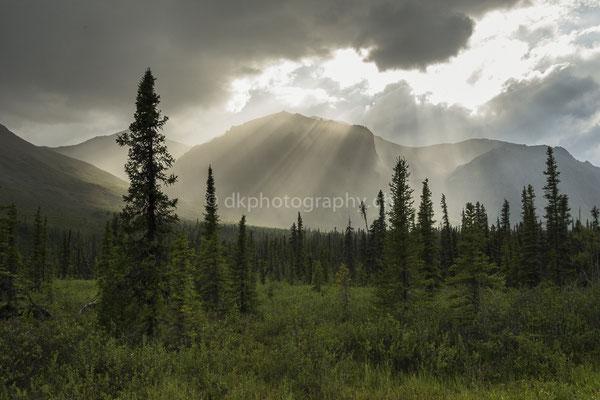Wrangell-St.Elias Nationalpark Alaska 1 Bild-Nummer: 119