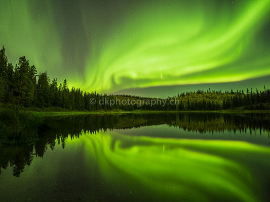 Aurora borealis 1, Whitehorse Canada Bild-Nummer: 44