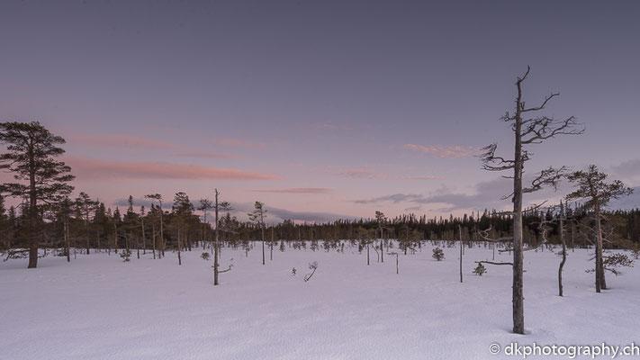 Abendrot, Fulufjället (Schweden).