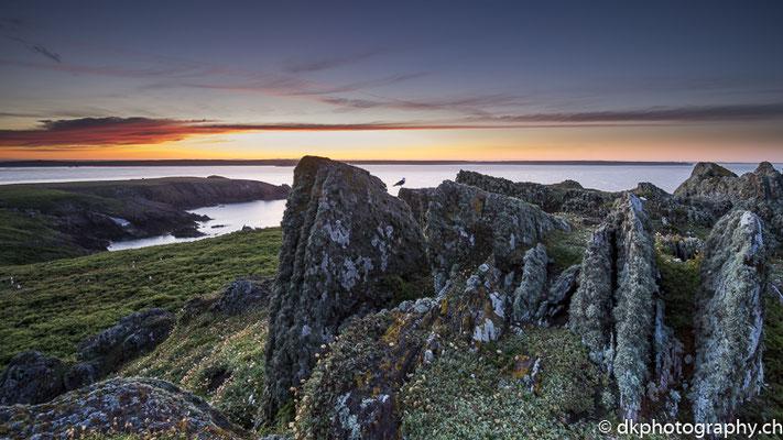 Sonnenaufgang Skokholm, aufgenommen in Wales. Bild-Nummer: 323