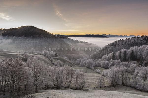 Nebel im Mittelland, Mümliswil (CH). Bild-Nummer: 259