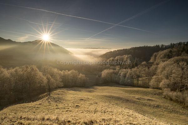 Erste wärmende Sonnenstrahlen, Mümliswil (CH). Bild-Nummer: 260