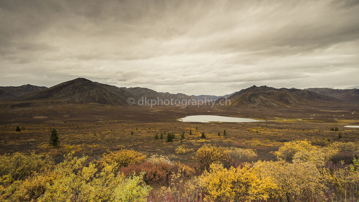 Indian Summer on Dempster Highway 2, Canada