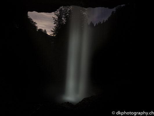 Bärglistüber bei Nacht. Bild-Nummer: 353