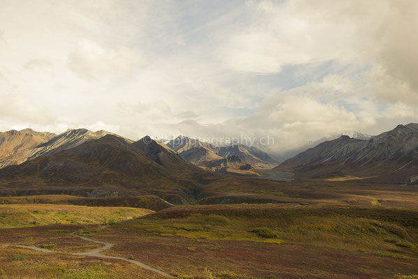 View to Mt. Eielson, Denali National Park Alaska