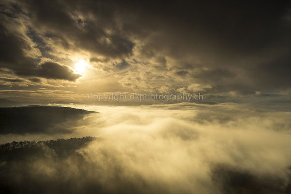 Vom Nebel verschluckt, Gempen (CH). Bild-Nummer: 262