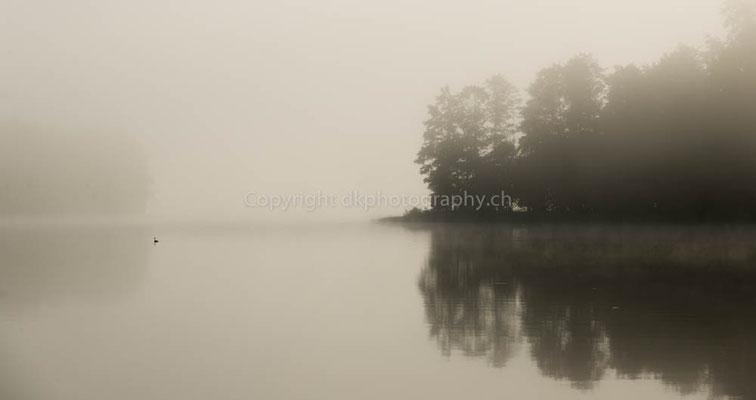 Nebel über dem See, aufgenommen in Polen.