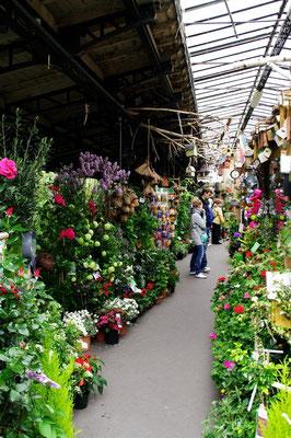 normal..c'est le marché aux fleurs