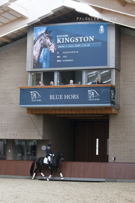 125. Blue Hors Kingston - Reiter Cristian Ruiz