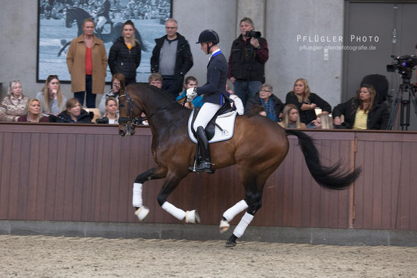 146. Blue Hors Zackery - Reiter Daniel Bachmann Andersen