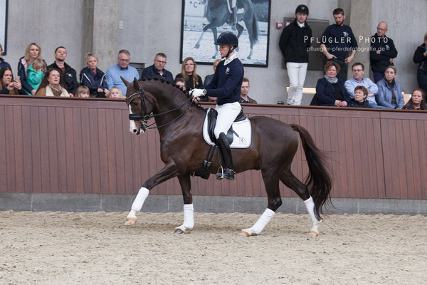 97. Blue Hors Don Olymbrio - Reiter Daniel Bachmann Andersen