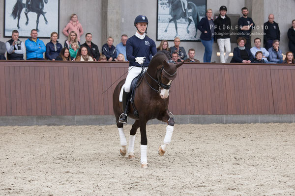 109. Blue Hors Don Olymbrio - Reiter Daniel Bachmann Andersen