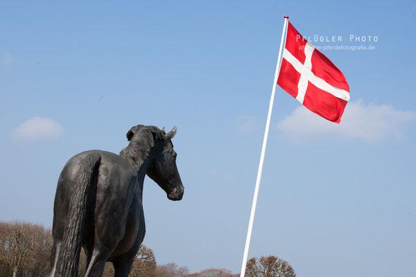 Bronzestatue von Don Schufro mit Dänischer Flagge vor dem Gestüt des Blue Hors